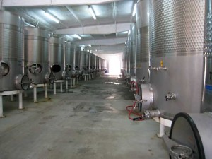 L.A. Cetto Wine Vats