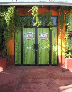 El Paraiso back door